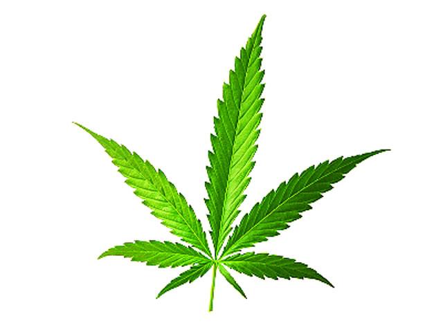 Marijuana: 7 Health Myths Up in Smoke - Marijuana: 7 ... Cbs News Logo Vector