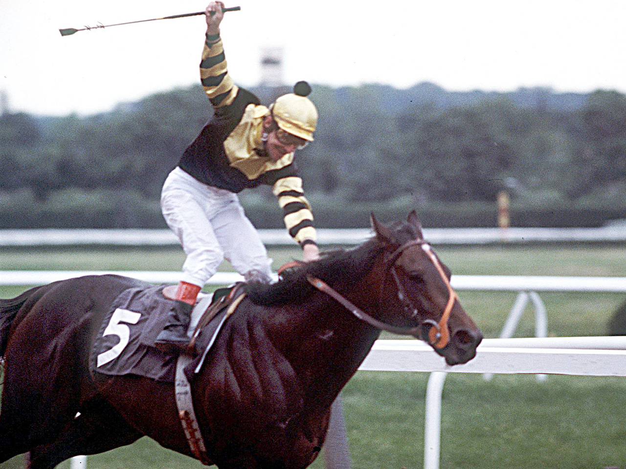 Seattle Slew Full Documentary