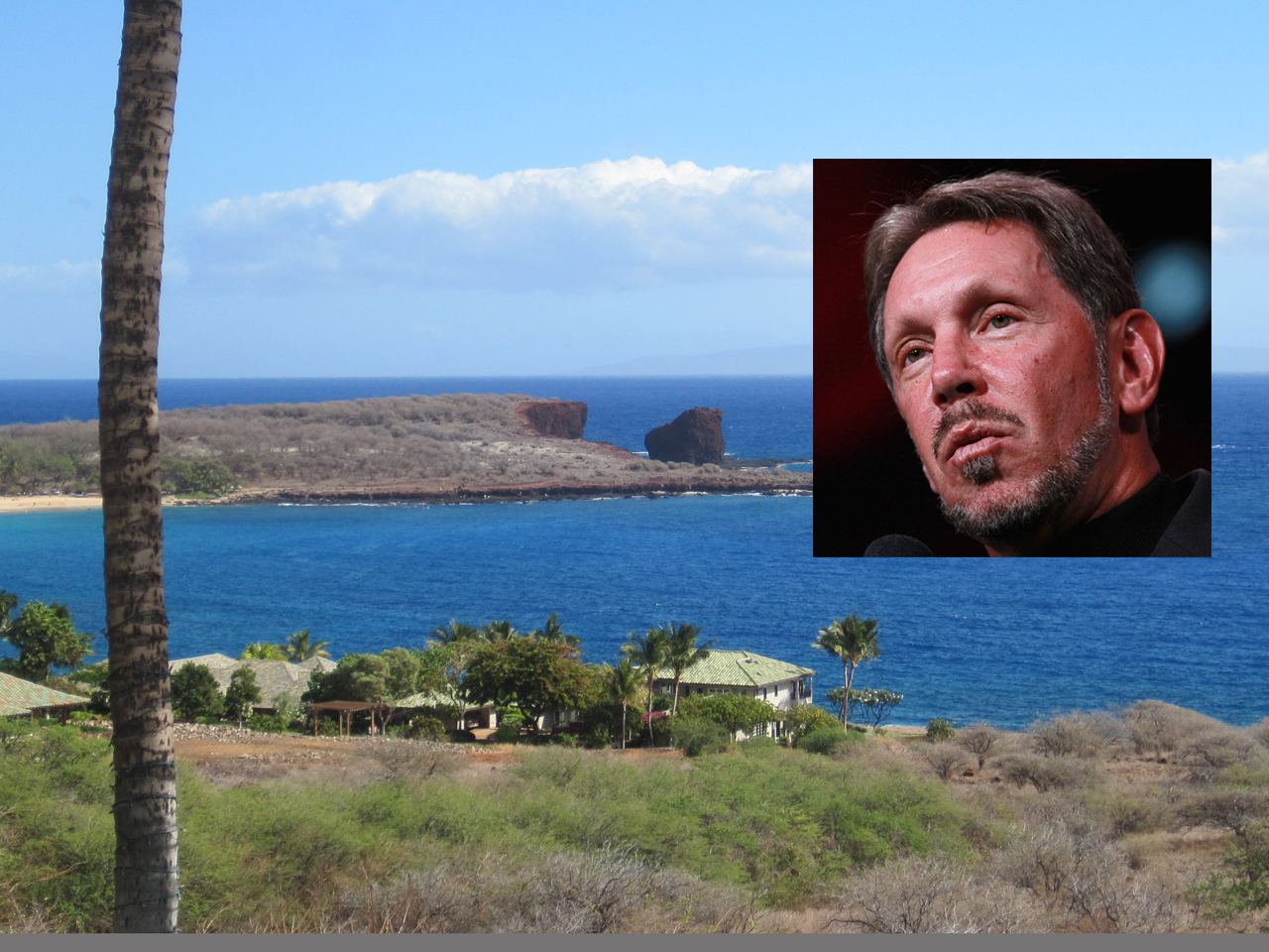 Oracle Corp. CEO Larry Ellison To Buy Most Of Hawaiian