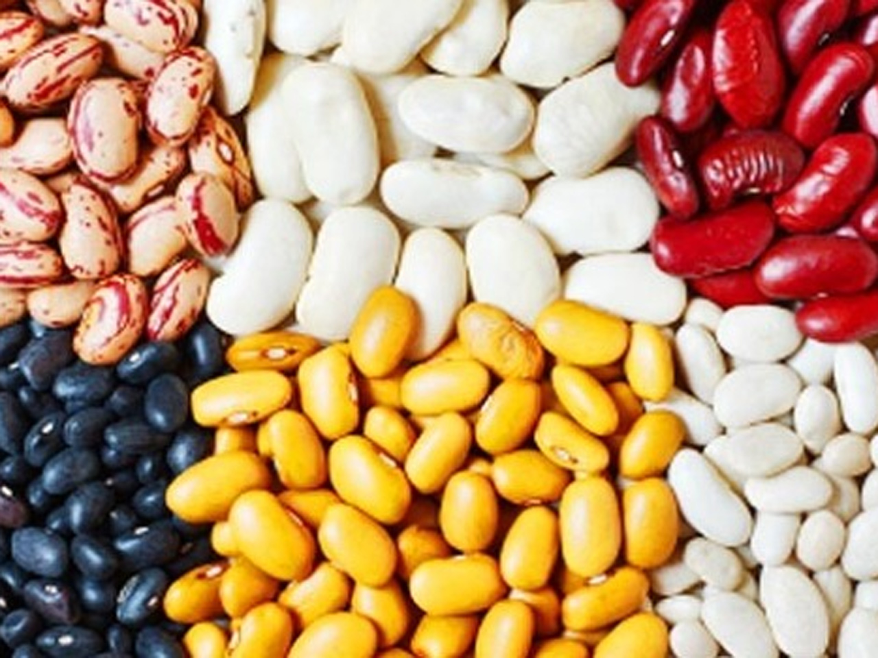 Beans may be beneficial for people with diabetes - CBS News