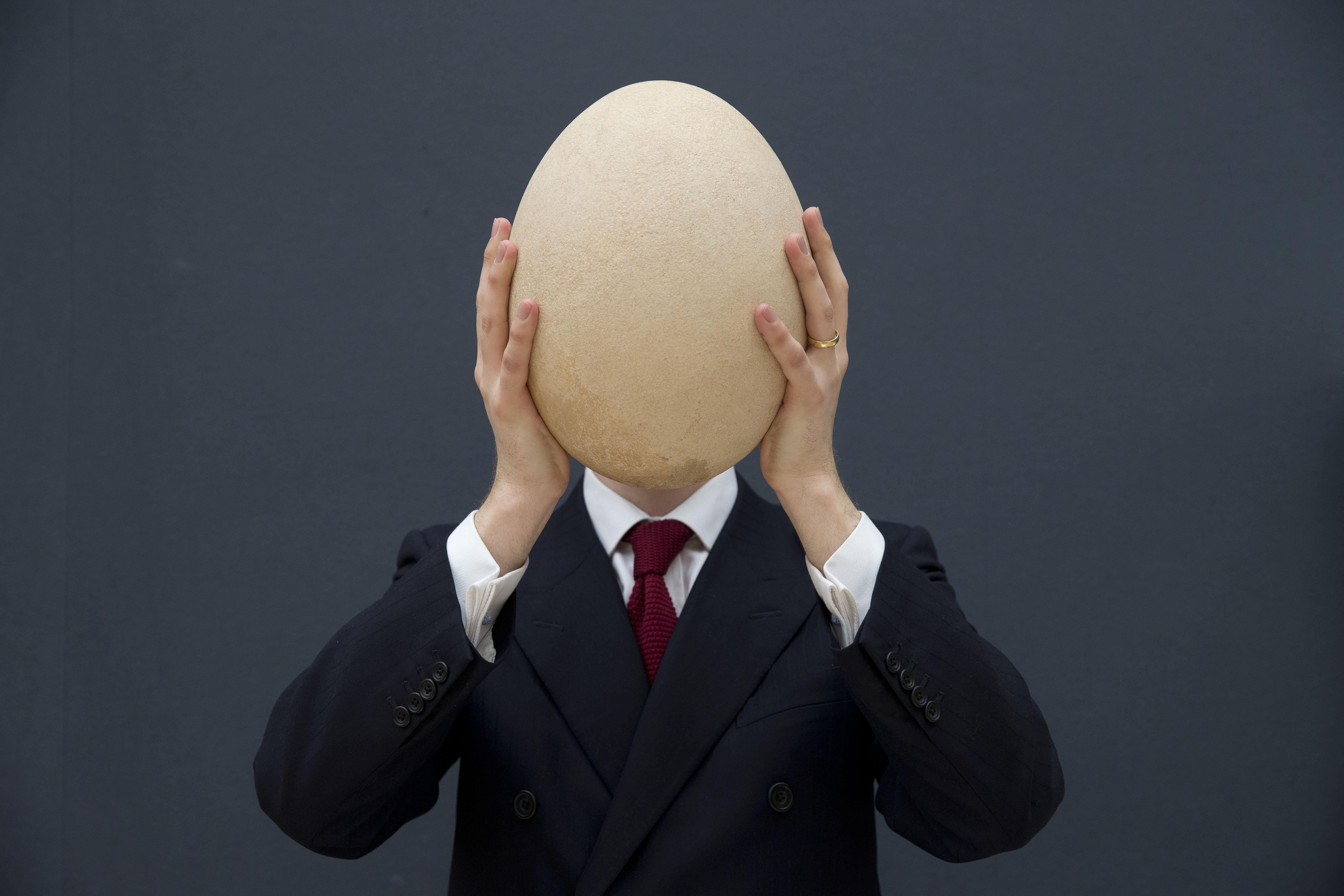 Самые большие яйца 17 фотография