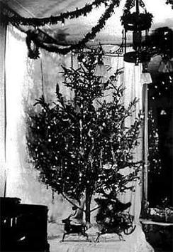 Johnson_christmas_lights.jpg