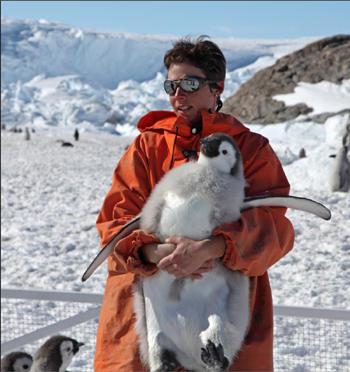 emperor-penguin350.jpg