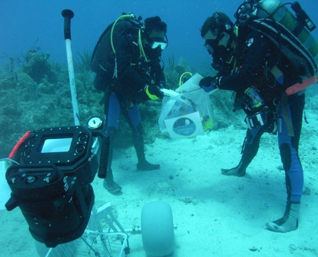 nasa-neemo-620w-659364mainsamplecollection.jpg