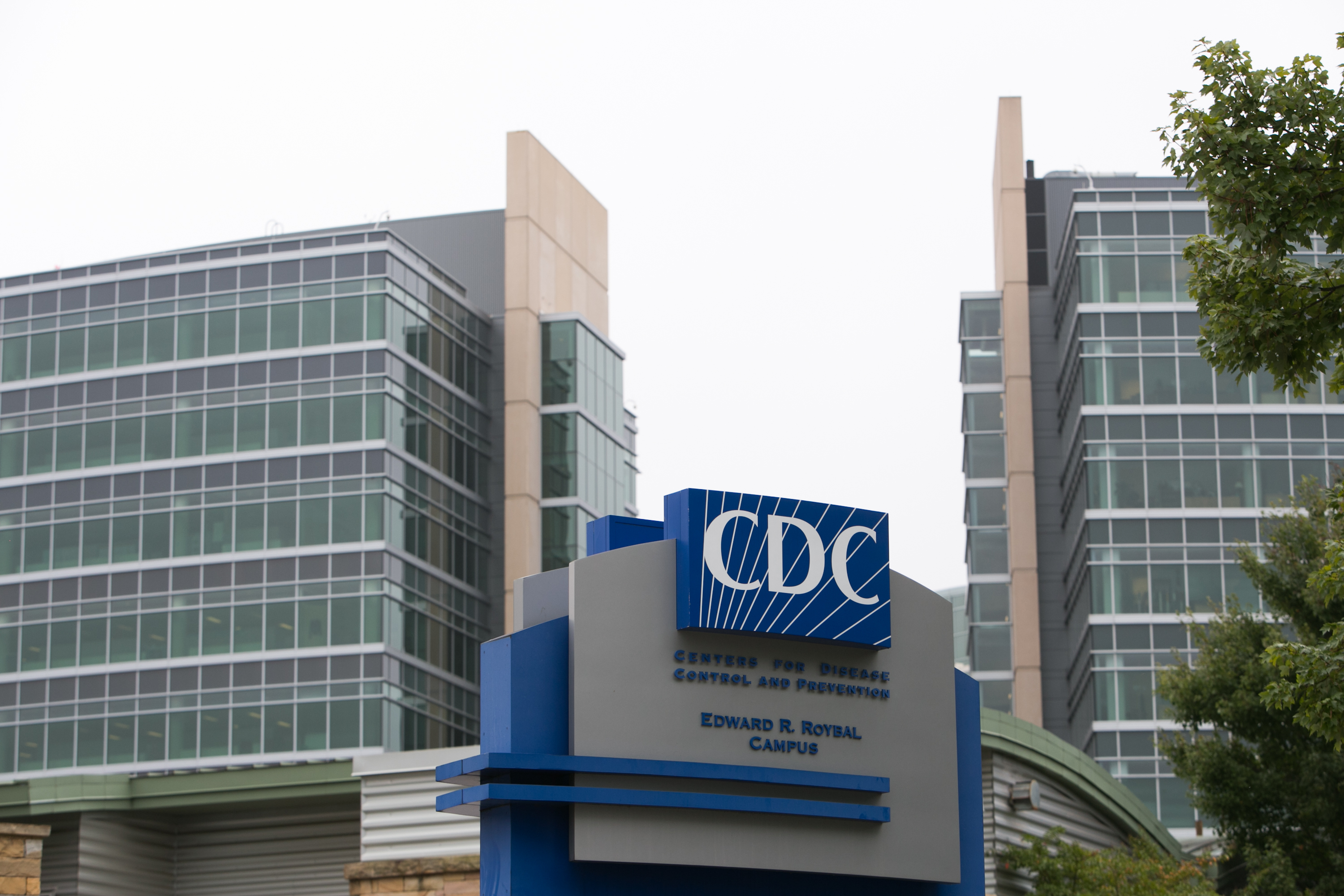 CDC labs cited for mishandled bioterror germs