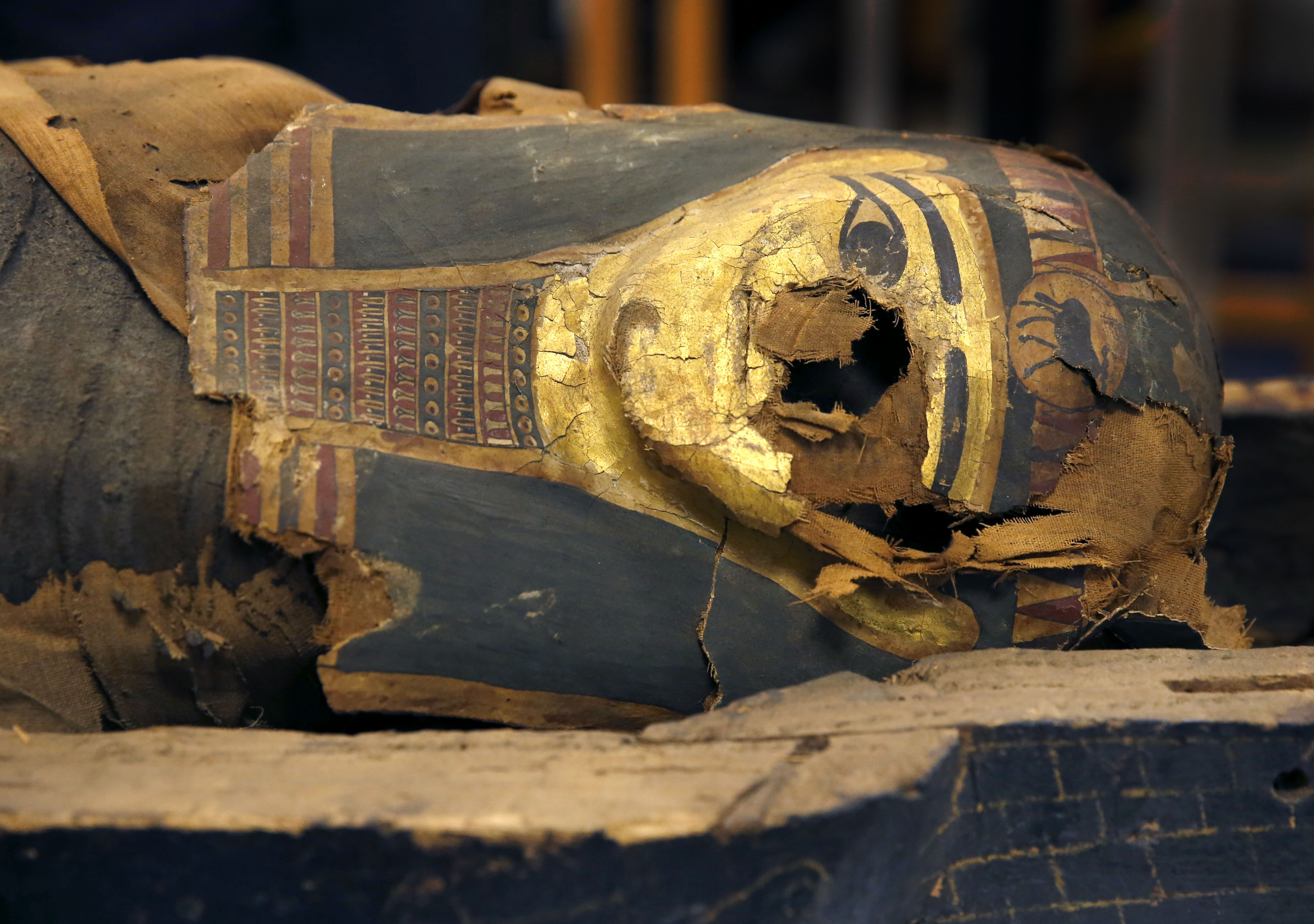 The first genome data from Egyptian mummies is in