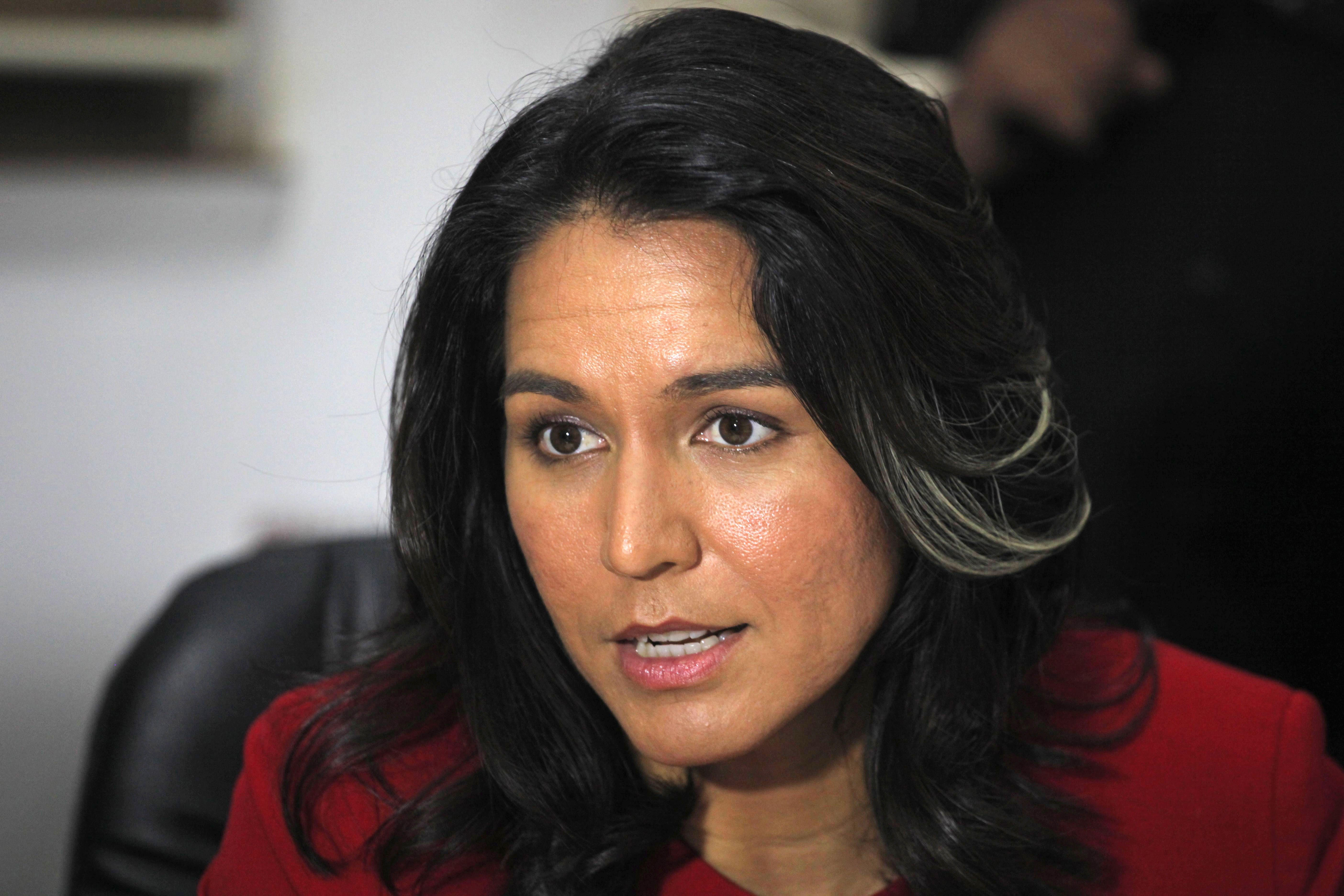 Unease over Congresswoman Tulsi Gabbard's meeting with President Bashar al-Assad during Syria ...