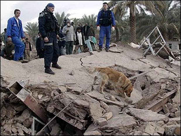 Iranian Quake: The Aftermath