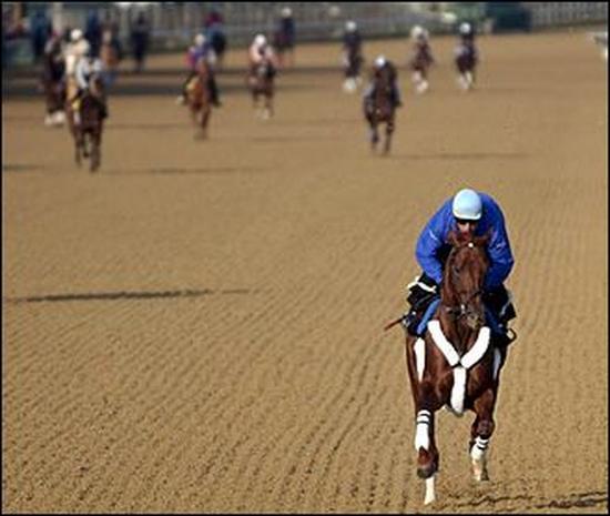 2004 Kentucky Derby