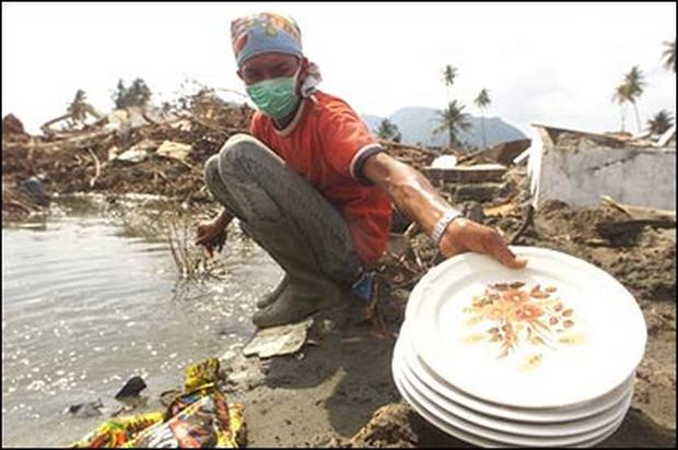 Tsunami: Latest Photos