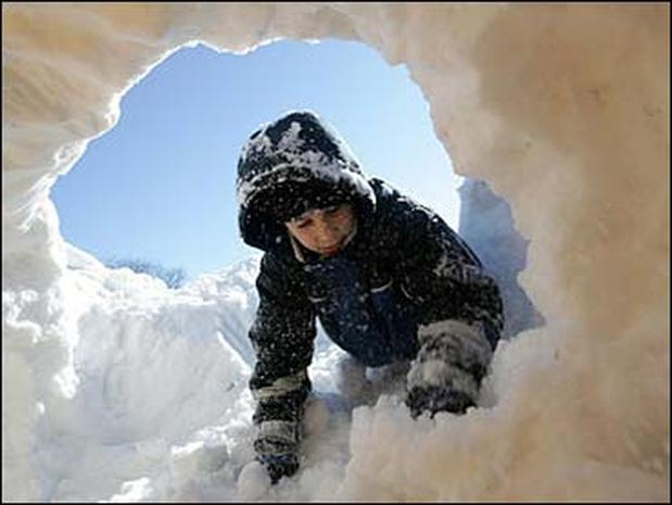 Winter Wallop