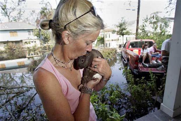 More Katrina Critters