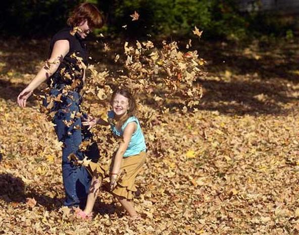 Fall Photos 2005