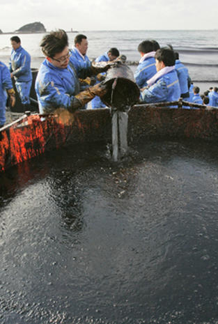 South Korean Oil Spill