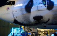 Panda Express
