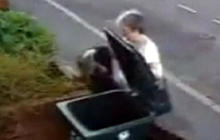 UK Woman Throws Cat in the Trash