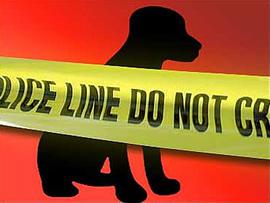 Murder-suicide over a dog? Ill. Man Allegedly Shot Daughter's Boyfriend, Himself