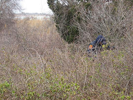 Long Island serial killer? Police find bones in new search area