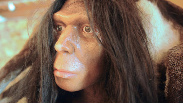 neanderthal language The neanderthal remains found in the kebara cave, israel photo source  the hyoid bone, which is the only bone in the body not connected to any other, is the foundation of speech and is found only in humans and neanderthals.