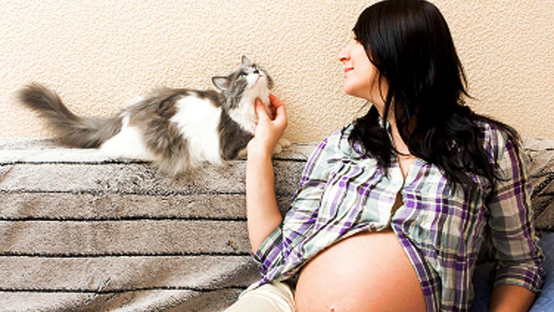 Беременная женщина кошка