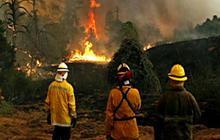 "Texas Forest Service: ""Unprecedented fire behavior"""