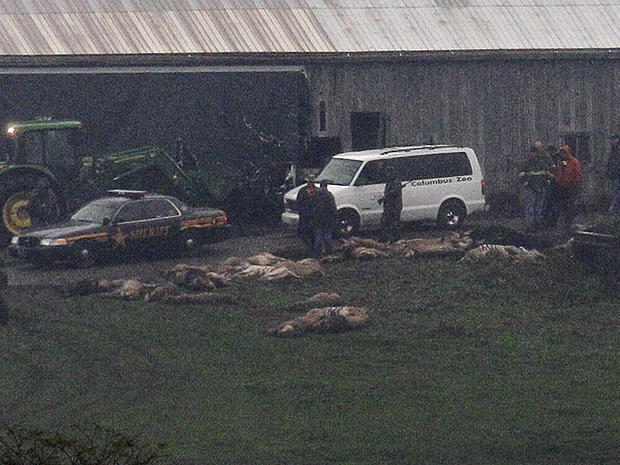 Investigators walk around a barn as carcasses lay on the ground at the Muskingum County Animal Farm, Oct. 19, 2011, in Zanesville, Ohio.