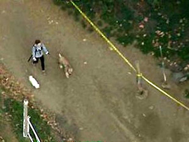 2012年1月17日,洛杉矶的好莱坞山地区出现了一名狗步行者,此前警方回应了一份报告说附近发现了人头。