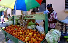 Private business sector flourishing in Cuba
