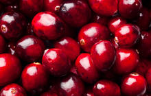 Cranberries do prevent UTIs, study suggests