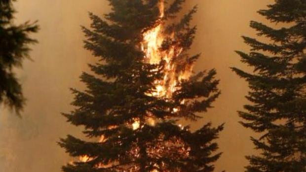 野火威胁北加利福尼亚的数千所房屋。