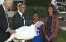Obama pardons presidential turkey