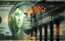 Stock market's amazing recovery