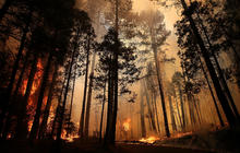 Massive fire still burning in Yosemite