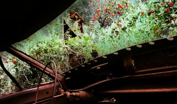 Mulholland Drive car wrecks decay artfully