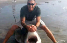 Fisherman reels in great white shark - caught on tape