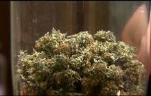 Iraq vet among first to buy recreational marijuana in Denver