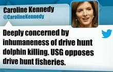 Caroline Kennedy criticizes Japan dolphin hunt on Twitter