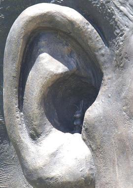 Mandela Statue ear detail