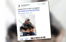 Slopestyle skier Gus Kenworthy saving Sochi puppies