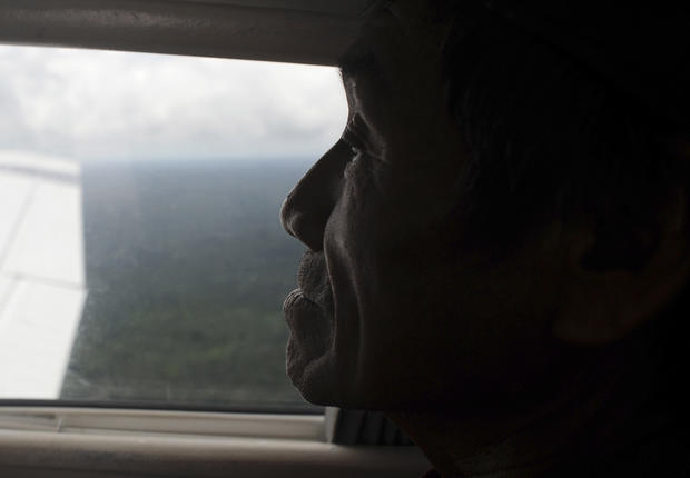 Struggles for survival in the Amazon
