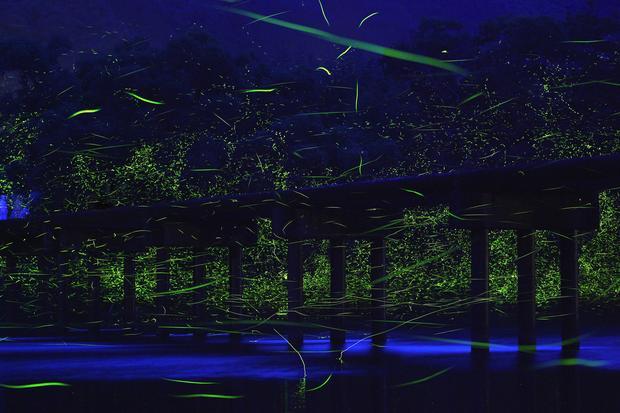 Photographer captures magical nighttime landscapes