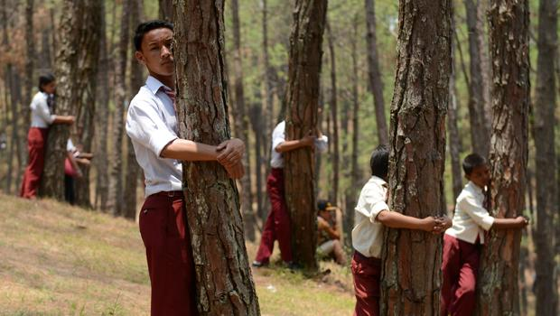 Thousands in Nepal try to set world record for largest ...