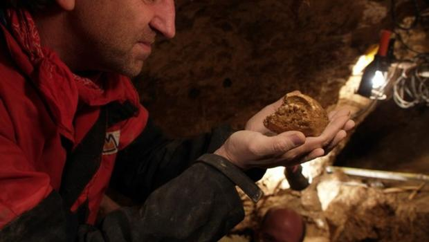 hominin-skull-11.jpg
