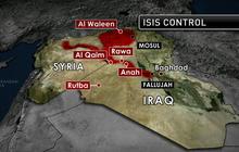 Iraqi militants unleash successful blitz near Syrian border
