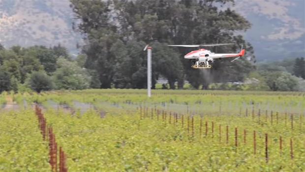 雅马哈RMAX直升机,无人机作物喷粉-620.jpg