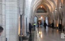 Watch: Gunshots echo in Canadian Parliament