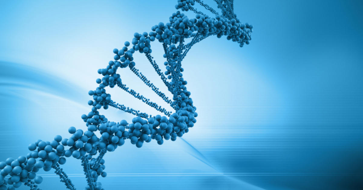 can your genes predict future success in life cbs news