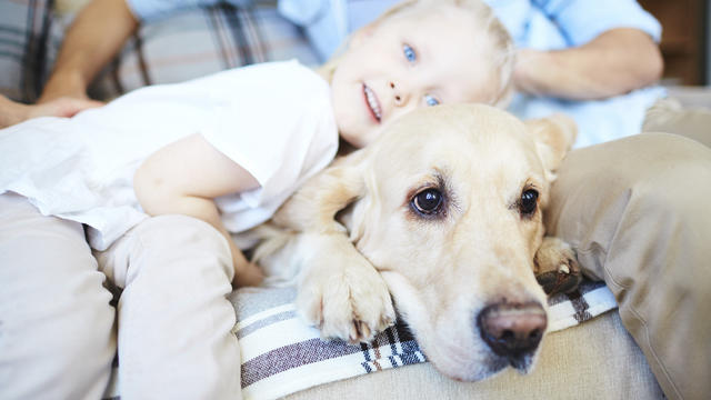 dog-with-child-on-couch.jpg