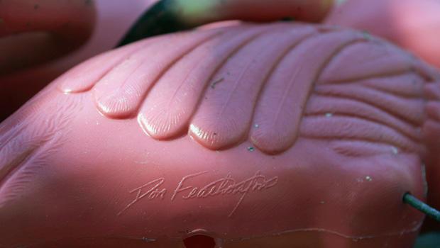 粉红色的火烈鸟,唐 - 费瑟斯通的签名,72261868.jpg