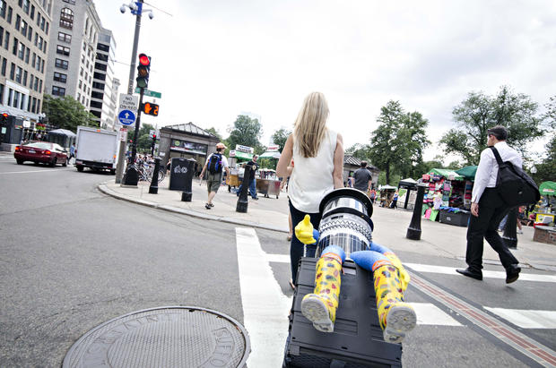 Life and times of the hitchhiking robot before brutal demise